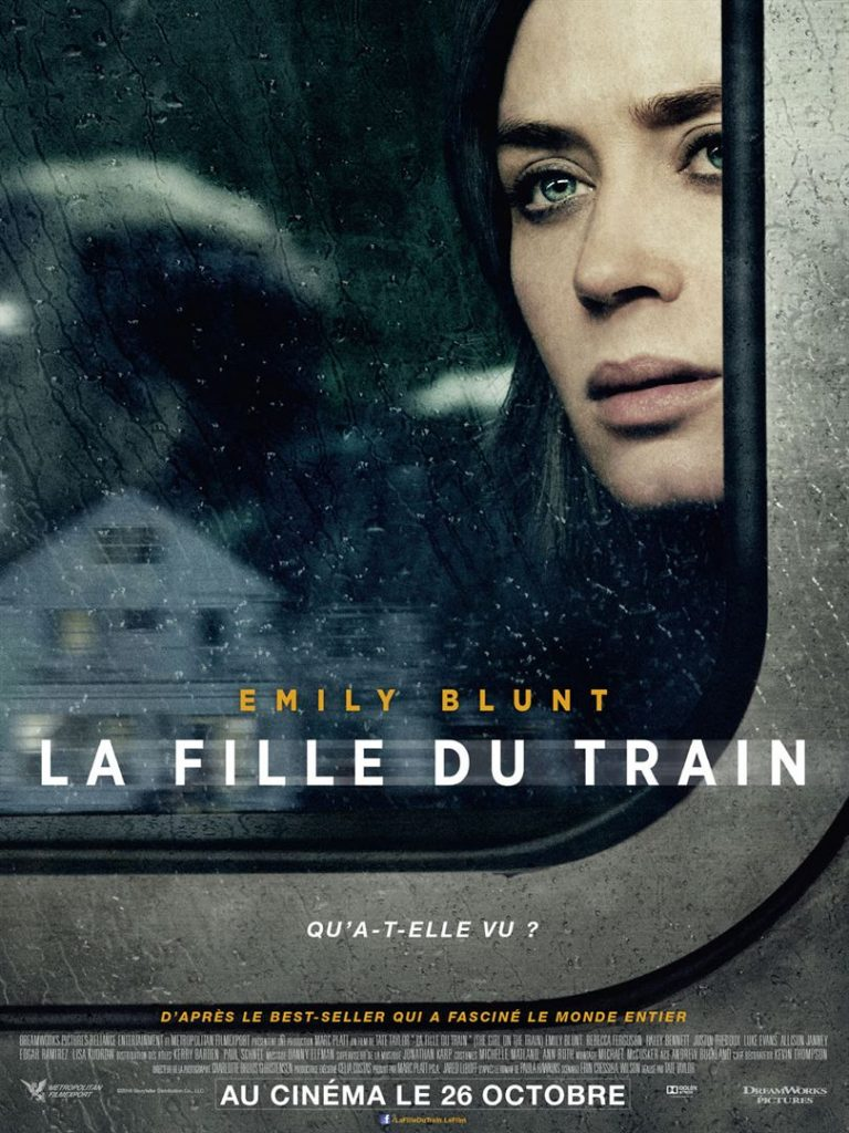 la fille du train lavienmots